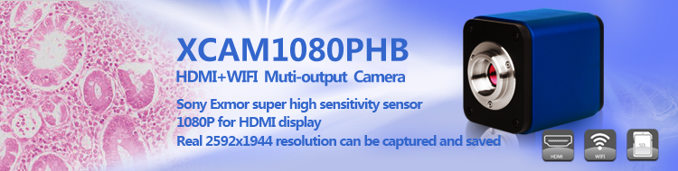 XCAM1080PHB Series C-mount HDMI CMOS Camera